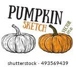 doodle pumpkins.vector paint... | Shutterstock .eps vector #493569439
