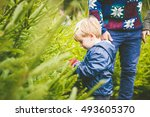 dad and son choosing the... | Shutterstock . vector #493605370