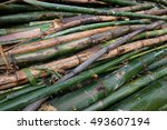 bamboo division   Shutterstock . vector #493607194