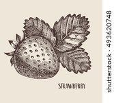 hand drawn strawberry  vector... | Shutterstock .eps vector #493620748