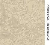 topographic map background...   Shutterstock . vector #493658530