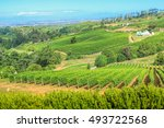 aerial view of a farm winery in ...   Shutterstock . vector #493722568