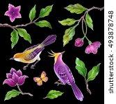 decorative bird  songbirds... | Shutterstock . vector #493878748