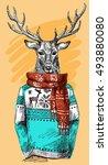 deer in knitted sweater. vector ... | Shutterstock .eps vector #493880080