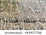 thatched roof | Shutterstock . vector #493927738