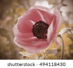 flowers backgrounds effect... | Shutterstock . vector #494118430