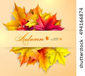 autumn background. leaves of... | Shutterstock .eps vector #494166874