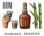 glass and bottle of rum with...   Shutterstock .eps vector #494249293