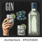 glass and bottle of gin and... | Shutterstock .eps vector #494253604