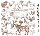 vector large set  farm theme.... | Shutterstock .eps vector #494335144