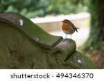 Robin On A Gravestone Shallow...