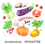hand painted watercolor... | Shutterstock . vector #494369788