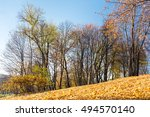 Autumn Landscape With Fallen...