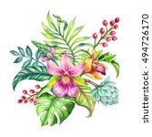 watercolor illustration ... | Shutterstock . vector #494726170