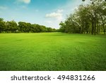 landscape of grass field and... | Shutterstock . vector #494831266
