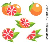 grapefruit with leaves.... | Shutterstock .eps vector #494859814