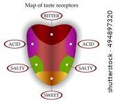 color map of taste receptors in ... | Shutterstock . vector #494897320