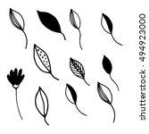 hand drawn vintage floral...   Shutterstock .eps vector #494923000