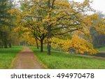 autumn in the alexander park in ... | Shutterstock . vector #494970478