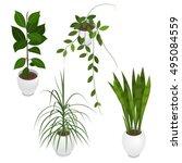 set of potted indoor  office... | Shutterstock .eps vector #495084559