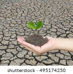 soil in a woman hand and... | Shutterstock . vector #495174250