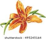 vector beautiful orange day...   Shutterstock .eps vector #495245164
