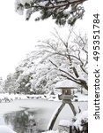japanese traditional garden ... | Shutterstock . vector #495351784