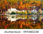 Autumn Forest Reflected In Water