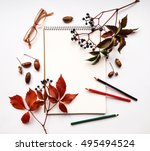 autumn composition with... | Shutterstock . vector #495494524