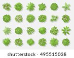 trees top view. different... | Shutterstock .eps vector #495515038