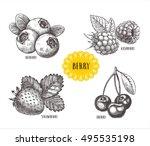 blueberries  raspberries ... | Shutterstock .eps vector #495535198