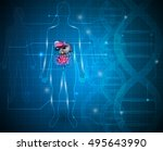 gastrointestinal tract abstract ... | Shutterstock . vector #495643990