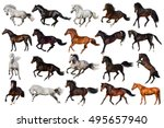 Horse Collection Isolated On...