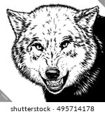 engrave isolated wolf vector... | Shutterstock .eps vector #495714178