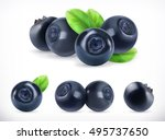 blueberry. sweet fruit. forest... | Shutterstock .eps vector #495737650