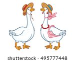 Pair Of Geese With A Hat ...