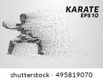 karate of particles. karate... | Shutterstock .eps vector #495819070
