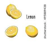 vector illustration of lemons...   Shutterstock .eps vector #495889438