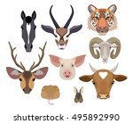 vector animals heads collection.... | Shutterstock .eps vector #495892990