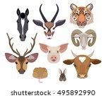 Vector Animals Heads Collectio...