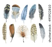 watercolor bird feather from... | Shutterstock . vector #495922810