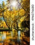 autumn  colors   fall in park... | Shutterstock . vector #496076680