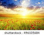 field with green grass and red... | Shutterstock . vector #496105684