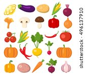set of vegetables. different... | Shutterstock . vector #496137910