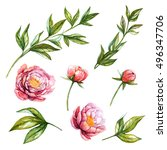 peony. watercolor floral set... | Shutterstock . vector #496347706