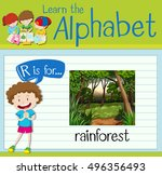 rainforest flashcard... | Shutterstock .eps vector #496356493