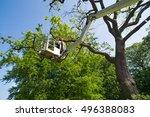 gardener or tree surgeon... | Shutterstock . vector #496388083