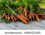 a lot of fresh harvested... | Shutterstock . vector #496422343
