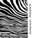 zebra stripes  animal skin ... | Shutterstock .eps vector #496560670