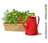 herbs in pot with red watering... | Shutterstock .eps vector #496623658